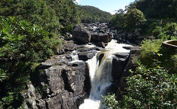 Parc National de Ranomafana