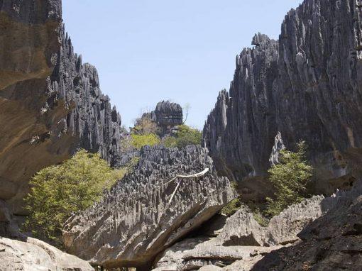 Parc national du Tsingy de Namoroka